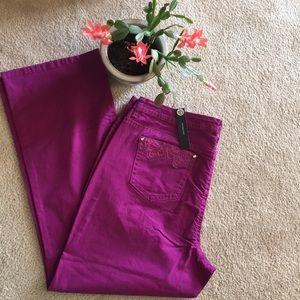NWT bootcut 20W Plum New Directions Fancy Jeans